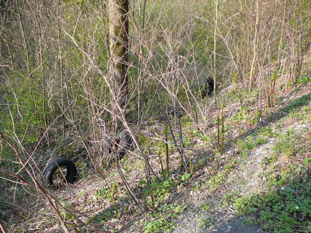 Reifenmüll im Wald Richtung Gutenburg