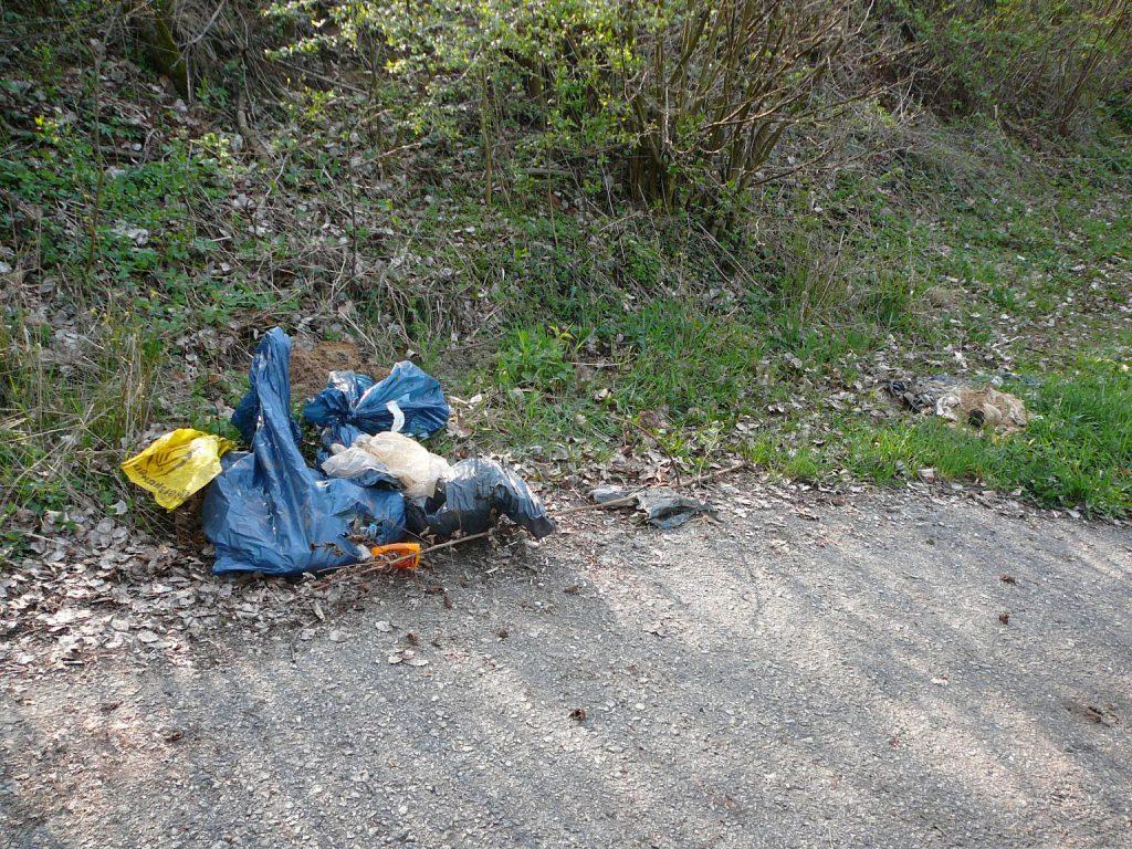 Müll im Wald im Roten Bühl
